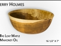 holmes jerry 0115 2