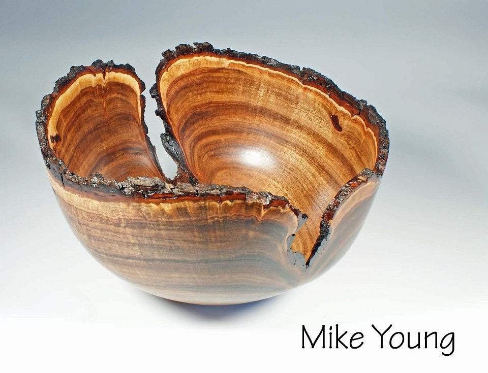 Mike_Young_2