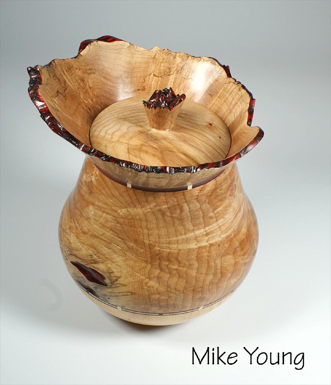Mike_Young_3